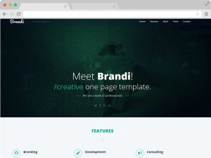 Brandi-Free-One-Page-Responsive-HTML5-Business-Template