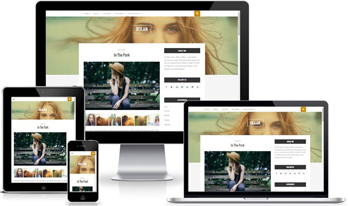 Bulan - Custom Widget Ready Free WordPress Blog Theme