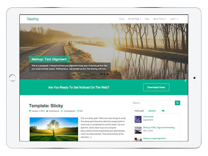 Dazzling---wordpress-theme-for-a-beautiful-blog