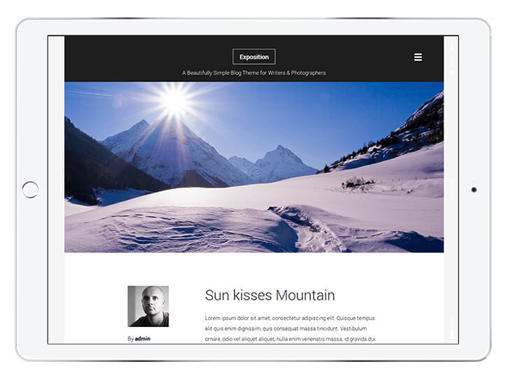 Exposition-Lite---wordpress-theme-for-a-beautiful-blog
