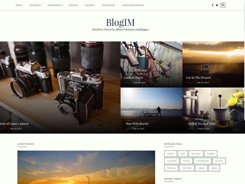 Internet Marketing WordPress Blog Theme for marketers