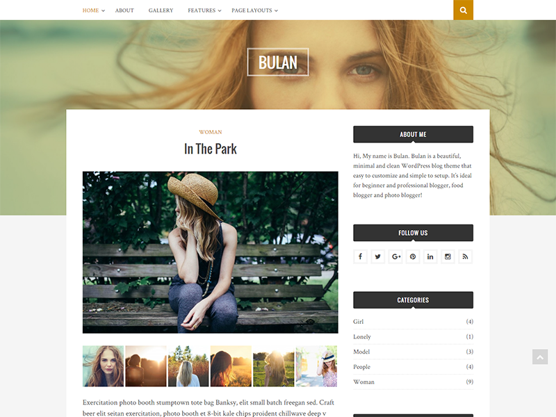 custom widget ready free WordPress blog theme