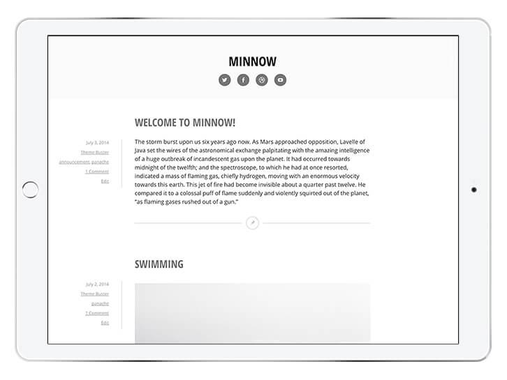 minnow---wordpress-theme-for-a-beautiful-blog