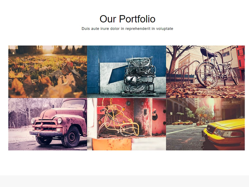 Simple one page bootstrap template free download - Navigator