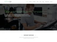 Themelight Free twitter bootstrap business template