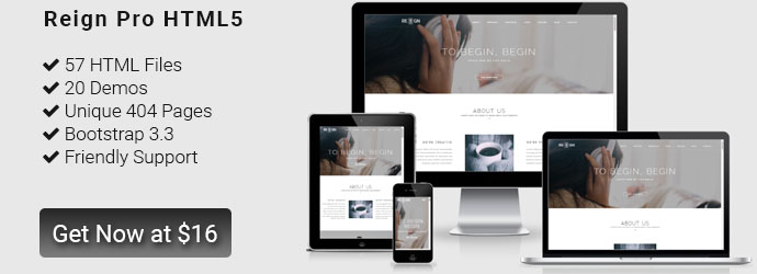 Reign Pro Premium HTML5 corporate template