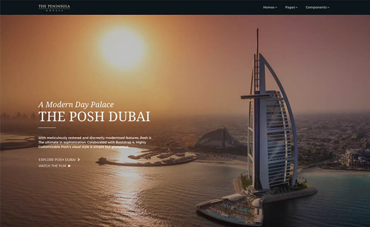 Multipurpose Website Templates With Free And Premium Options - Photography website templates free download
