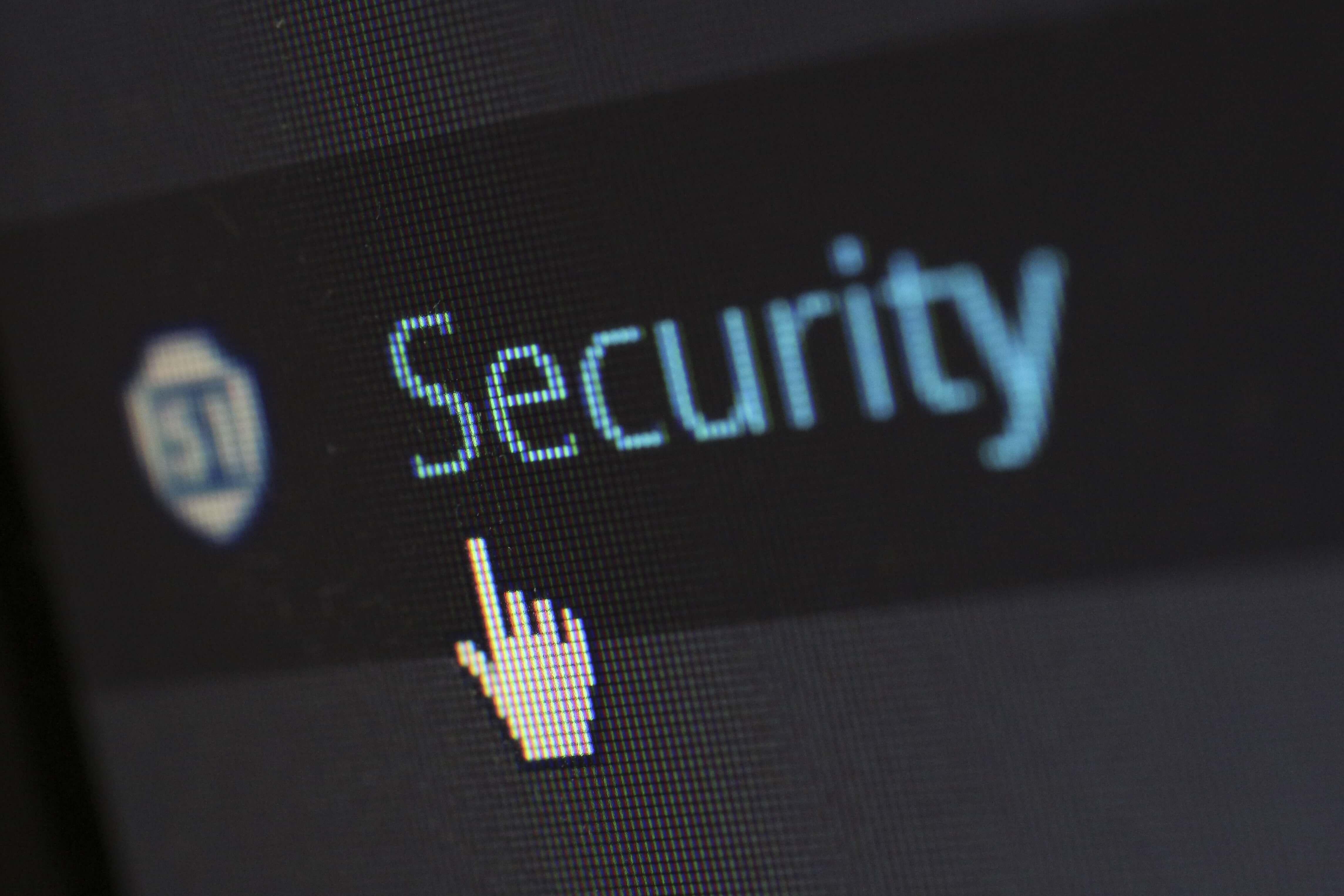 WordPress Theme Security